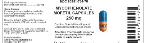 Advanced Stage IgAN Treatment With Mycophenolate Mofetil (MMF)